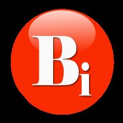 http://biz.123navi.net/swfu/d/logo-bizinfo-250-250-1.png